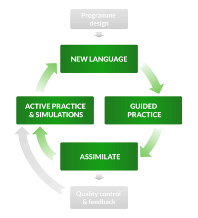 The lesson stage of the training cycle